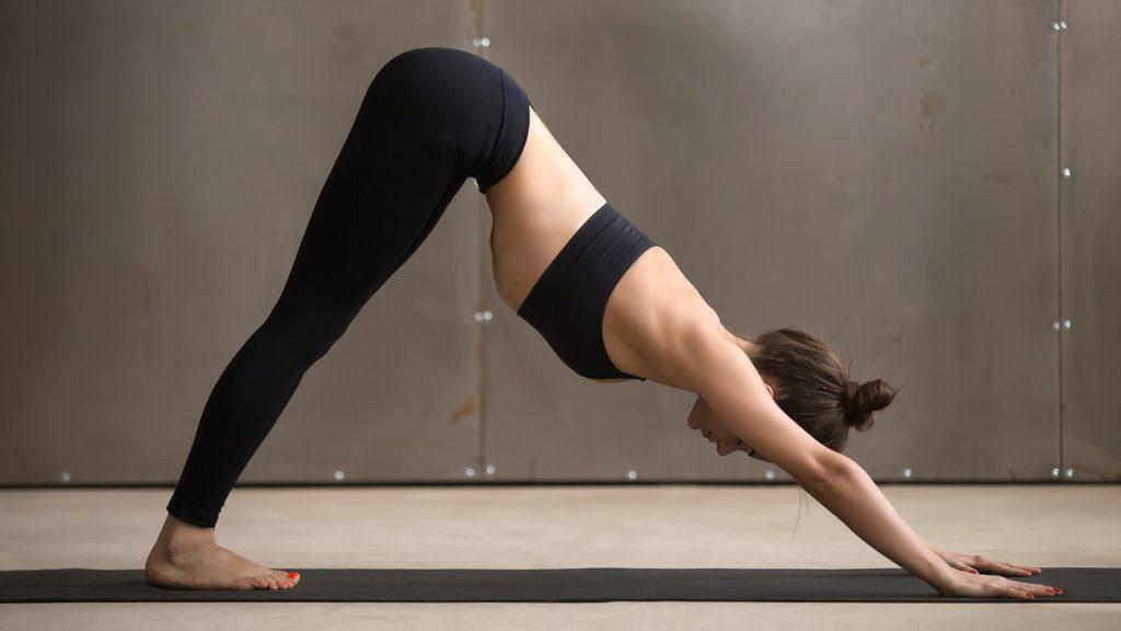 Flexibilidad de yoga en casa para perros caídos
